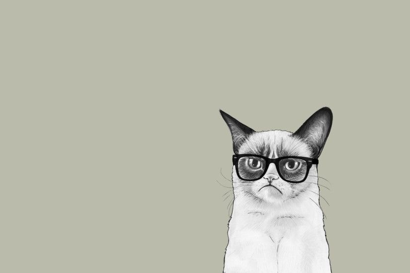 Grumpy Cat With Sunglass Wallpaper