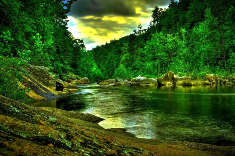 Download Beautiful Green Forest River Wide HD Wallpaper. Search more .