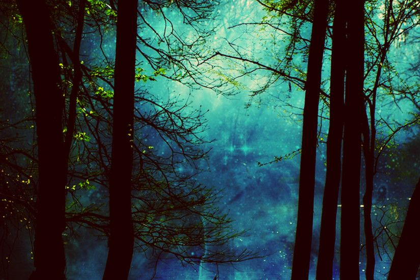 Forest Desktop Background wallpapers HD free - 335655