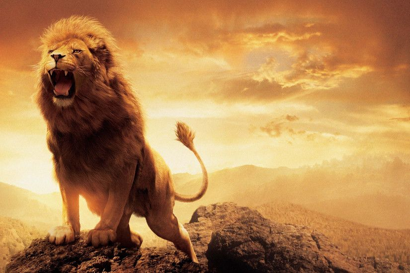 Click here to download in HD Format >> Narnia Lion Aslan http://