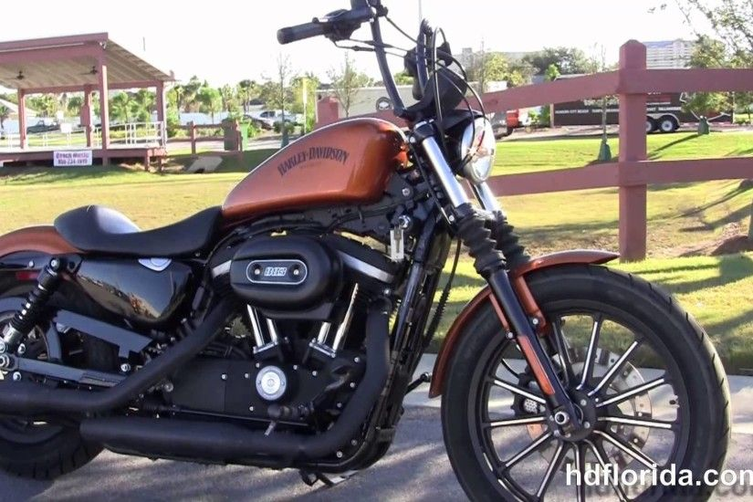 Harley Davidson Iron 883 for Sale Luxury Used 2014 Harley Davidson Iron 883  Motorcycles for Sale