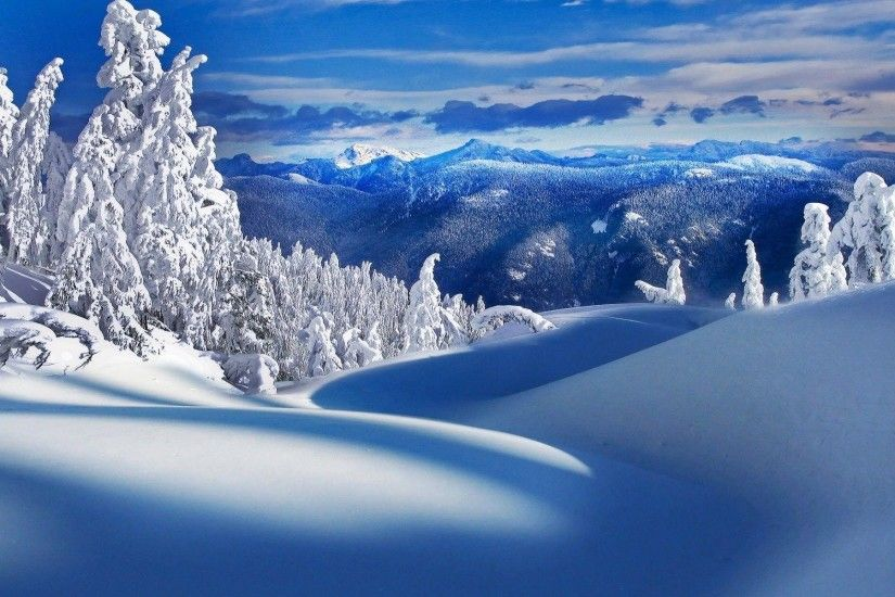 Christmas Snow Scene Wallpapers Wallpaper Cave
