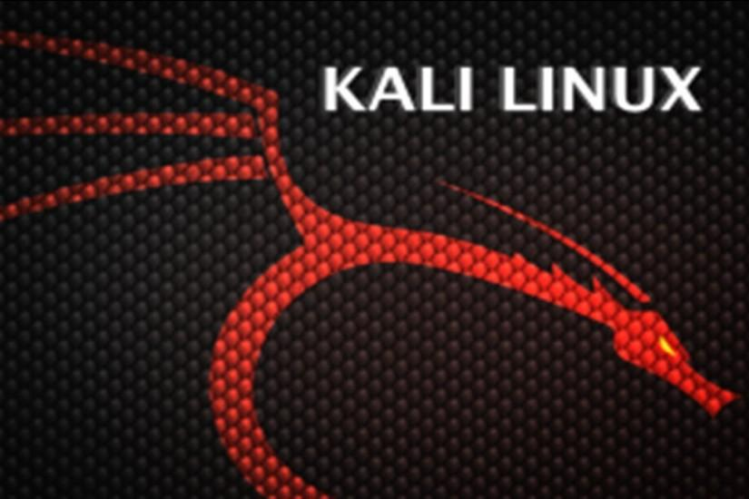 Kali Linux Wallpaper Download Free Beautiful Backgrounds