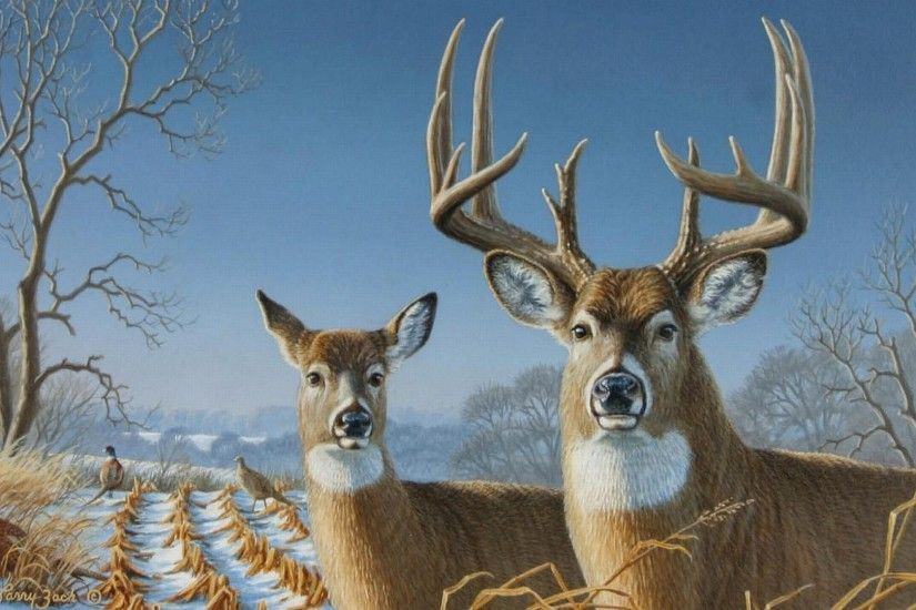 Big <b>Buck Deer Wallpaper</b> - WallpaperSafari