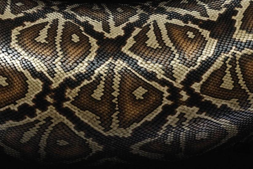 Preview wallpaper snake, scales, patterns, texture 1920x1080