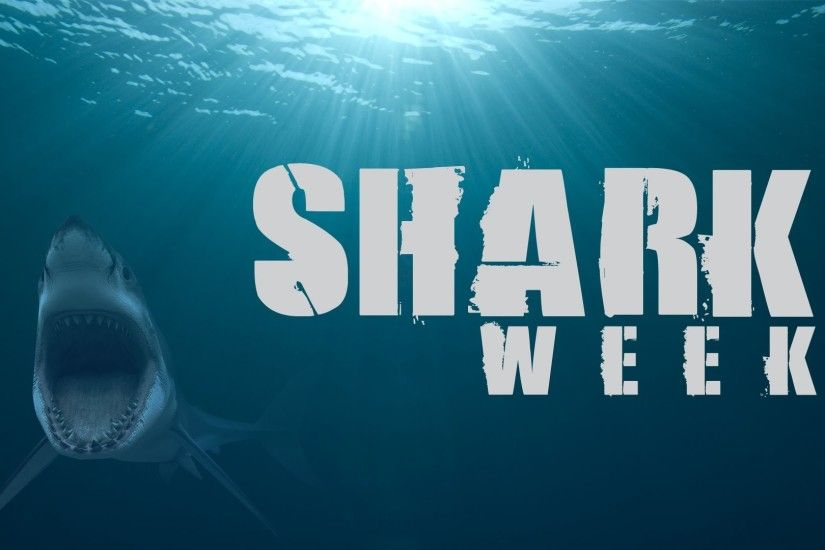 Shark Week 2016 on Discovery Channel: Specials to Watch Out For, No  Megalodon in Sight?