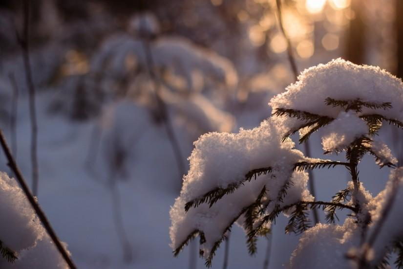 download free winter wallpapers 1920x1080