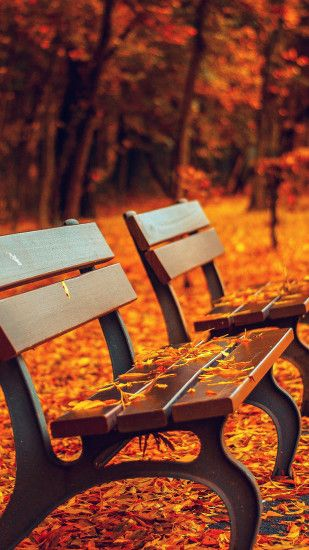 1080x1920 Nature Autumn Fall Leaves On Roadside Bench iPhone 6 Wallpaper .