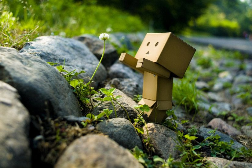 ... Smartphone · Danbo Widescreen Wallpaper