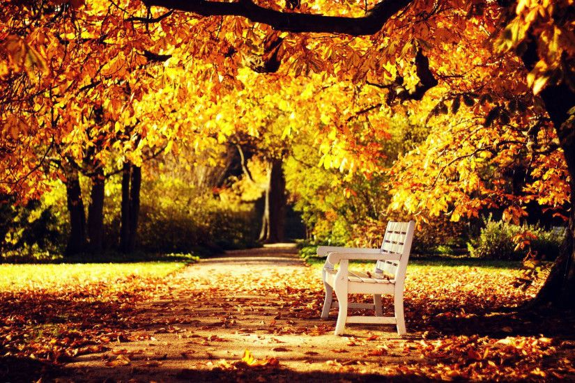 free-autumn-wallpaper-HD4-1 Autumn Wallpaper Examples for Your Desktop  Background