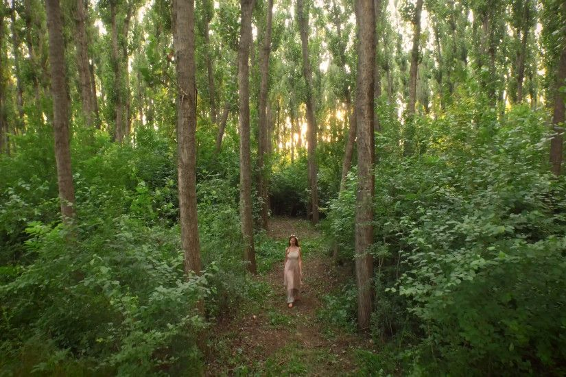 Beautiful Young Woman Hipster Dress Walking In Enchanted Forest Aerial  Drone Shot Sunset Fantasy Fairy Tale Concept Stock Video Footage -  VideoBlocks