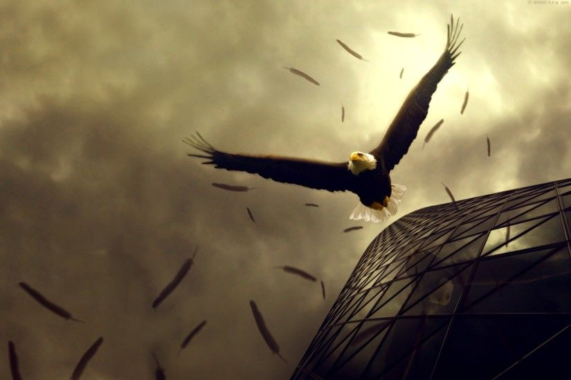 High-Definition-Eagle-Wallpaper-For-Free-Download