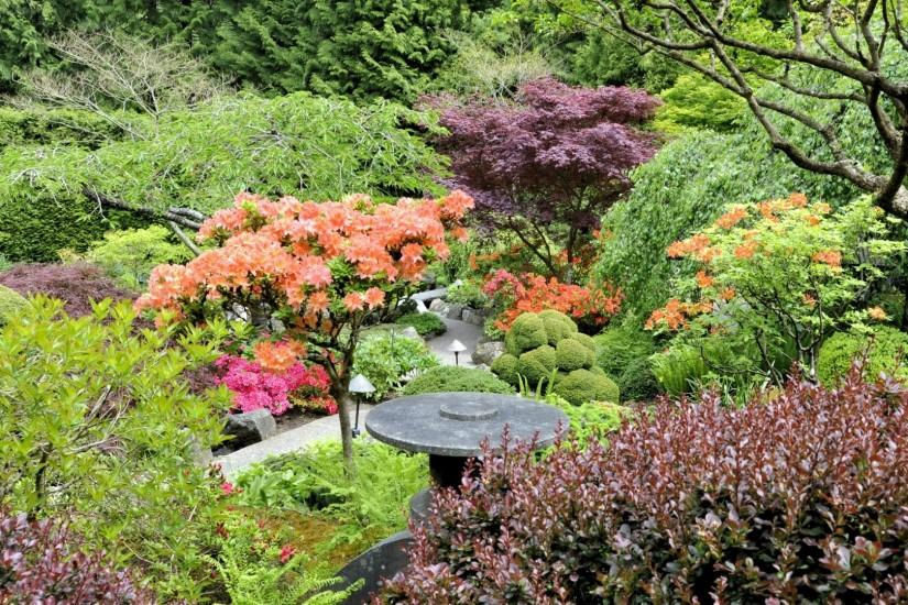 Preview wallpaper garden, trees, from above, bushes, orange, lilac, green