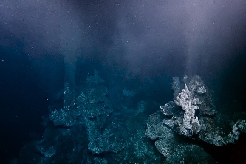 Gigantic Elaborate Hydrothermal Vents off British Columbia | Nautilus Live