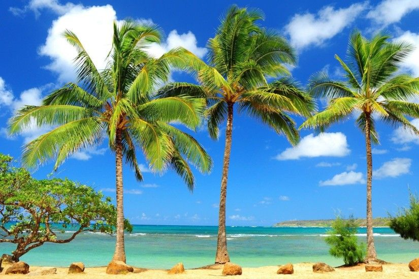 Tropical Beach Paradise HD desktop wallpaper : Widescreen : High 1920×1080  Tropical HD Wallpapers