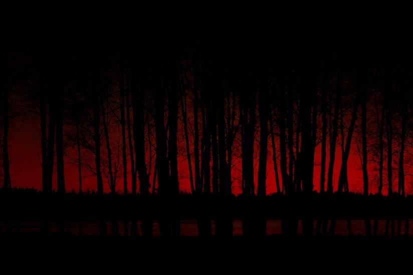 new dark forest background 1920x1080 tablet