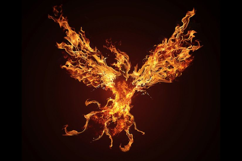 Phoenix Bird Wallpapers 183 ① Wallpapertag