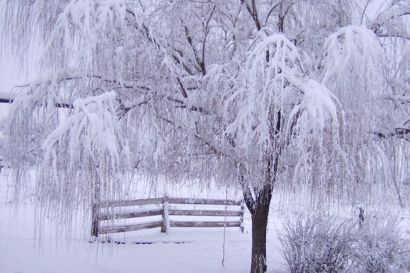 Winter Images | 1920x1440 Winter Ecstasy desktop PC and Mac wallpaper · Snow  ScenesWinter ...