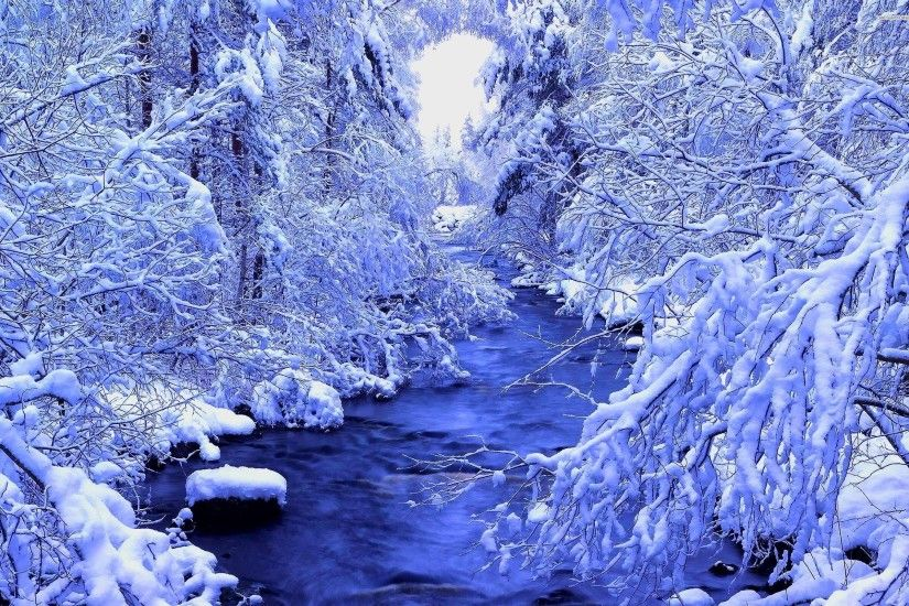 ... Wallpaper and River In The Beautiful Winter Forest | WallDev