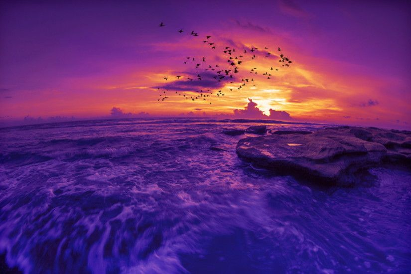 Most Beautiful Purple Sunset HD Wallpaper