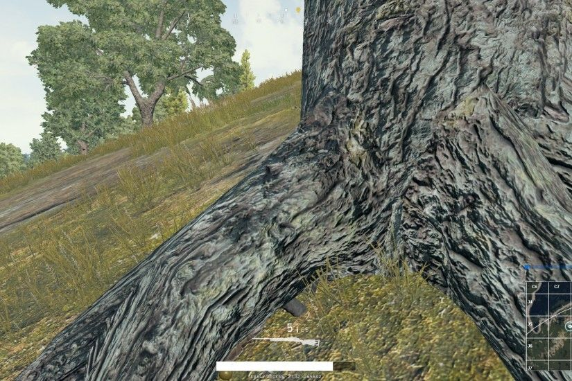 When you don't have a ghillie suit in PUBG