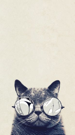 Cool Cat Glasses Android Wallpaper.jpg 1,080×1,920 pixels