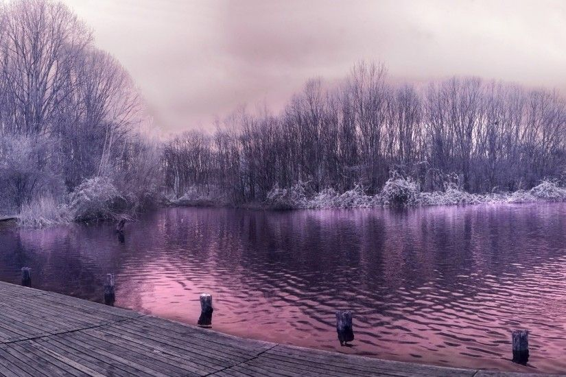 Pretty Purple Lake Trees Jetty wallpapers and stock photos