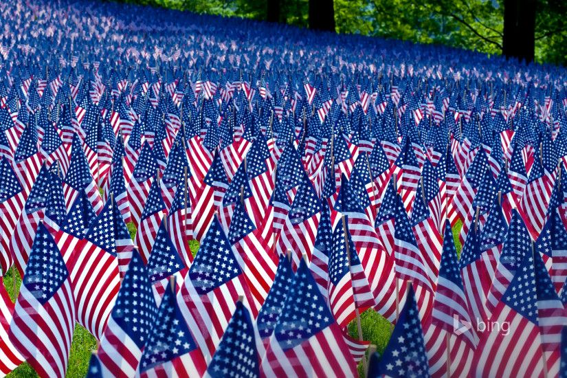 Field of flags displayed for Memorial Day, Boston, Massachusetts (© Paul  Marotta/Getty Images)