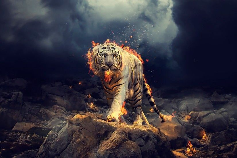 Creative Graphics / White Tiger Wallpaper