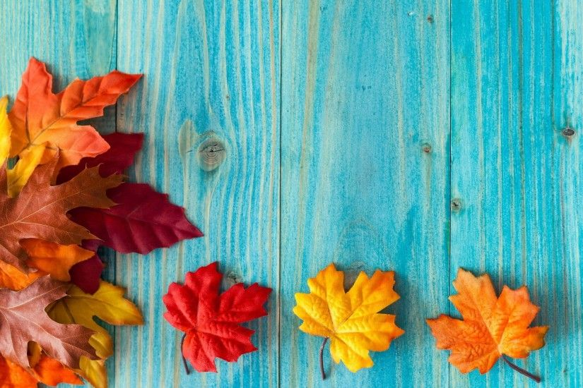 fall desktop nexus wallpaper, 760 kB - Ogden Jacobson