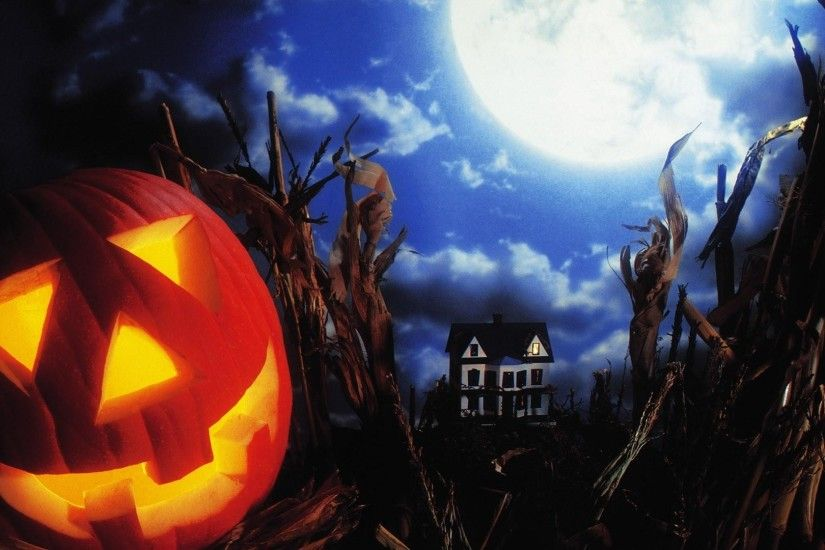 halloween manor field moon Jack-o'-lantern texas