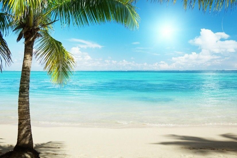 Tropical Beach Background wallpaper | 1920x1200 | #6783