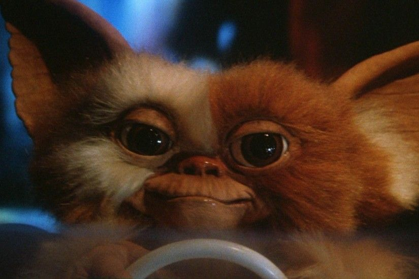 Gremlins Gizmo | Reviews & Ratings | Cheats & Discussion | Epicbuzz