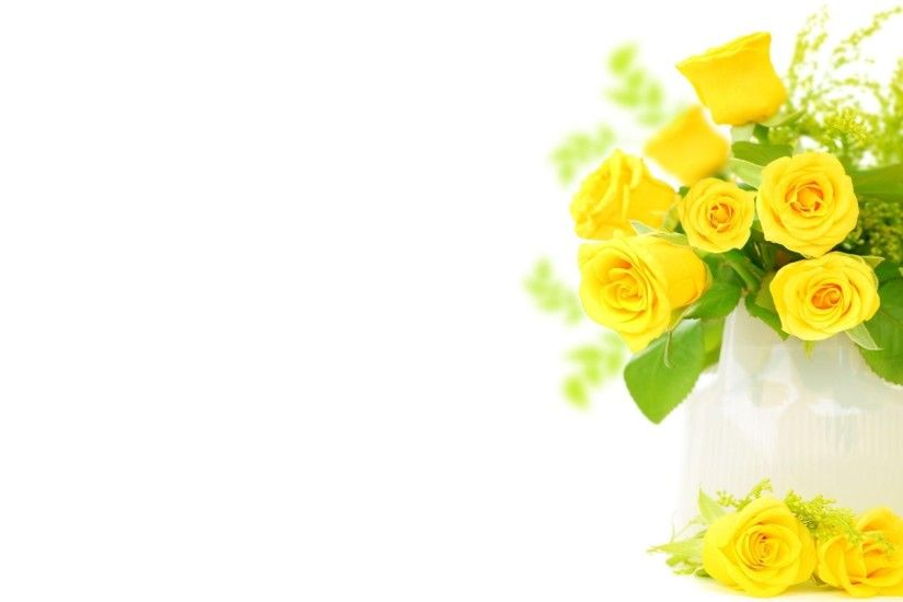 Yellow Roses Background Wallpaper .