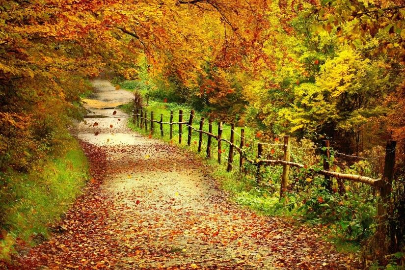 autumn scenes desktop wallpaper