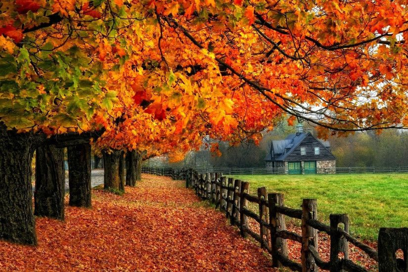 autumn-fall-tree-house-fenc Autumn Wallpaper Examples for Your Desktop  Background