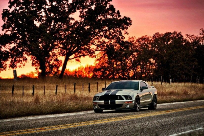 Picture 2016, Ford Mustang Shelby GT500 Muscle Car Wallpaper .