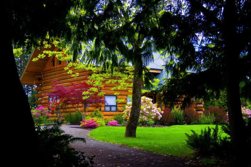 Man Made - Cabin Man Made House Spring Tree Flower Forest Wallpaper