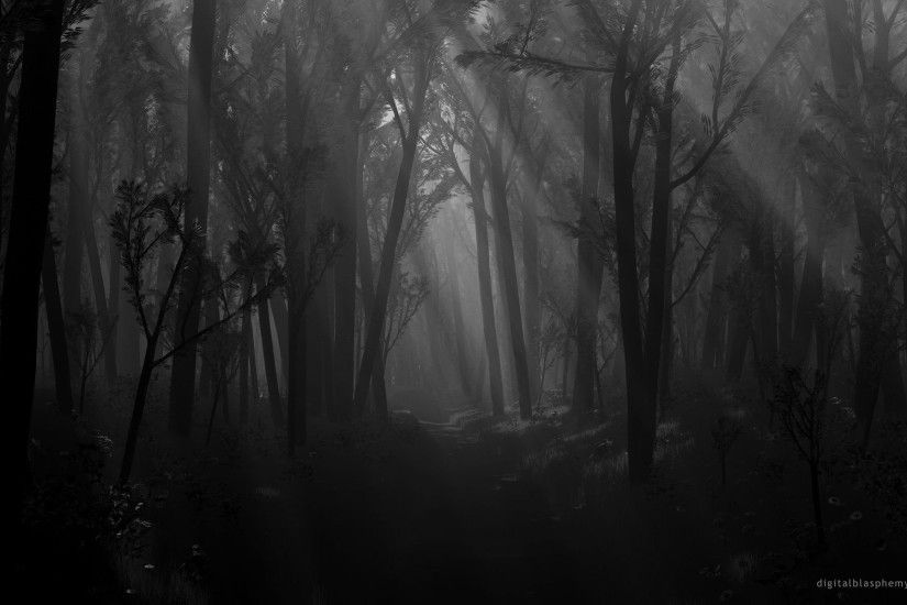 dark | Full View and Download dark forest Wallpaper 2 with resolution of .