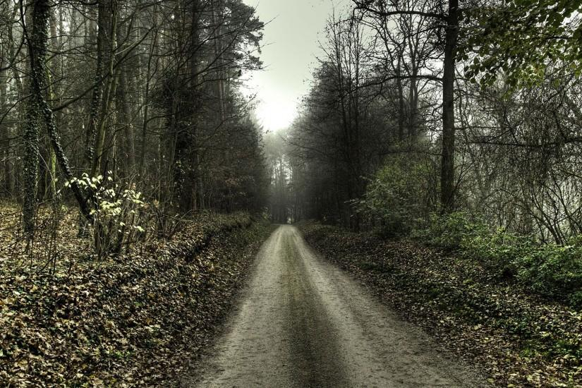Haunted Forest Scary Road - HD Wallpapers Widescreen - 1920x1080