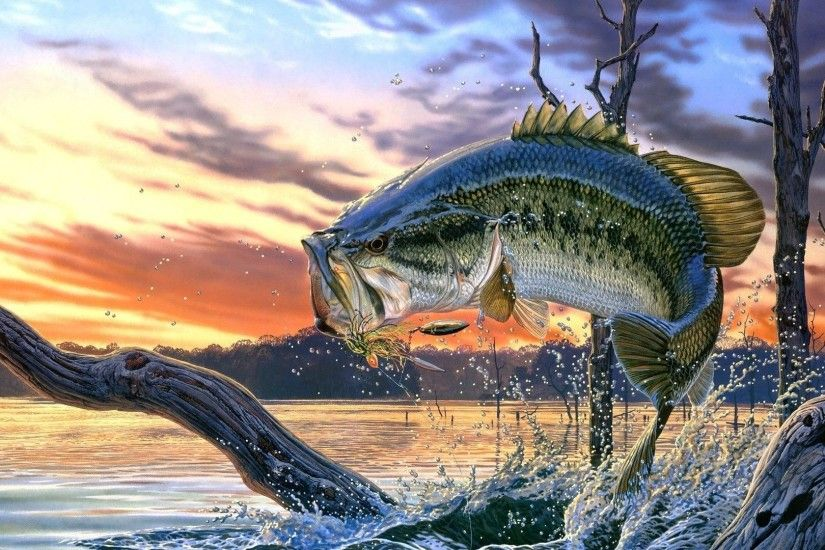Bass Fishing Wallpaper Full HD.