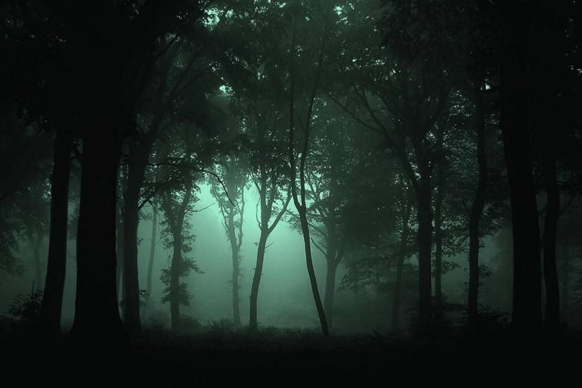 dark forest background 1920x1080 large resolution