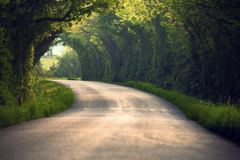 Preview wallpaper summer, nature, road, leaves, trees 1920x1080