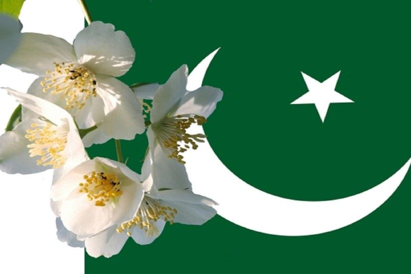 Pakistani Flags New Pictures Pakistani Flags New Wallpapers 2017-2018