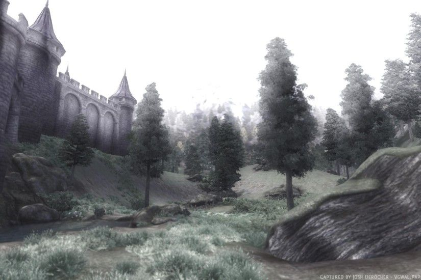 Castle wall and field - a screenshot from The Elder Scrolls IV: Oblivion. A