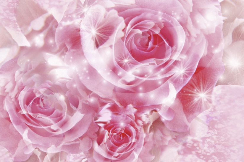 HD Wallpaper and background photos of Pretty Pink Roses Wallpaper for fans  of Pink (Color) images.
