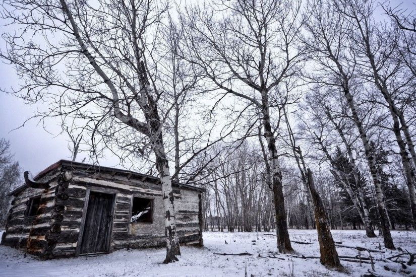 Abandoned Wood Cabin In The Winter Forest