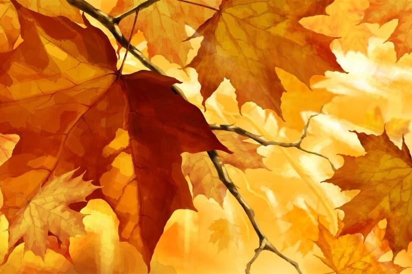 Fall Light wallpapers HD free - 97903
