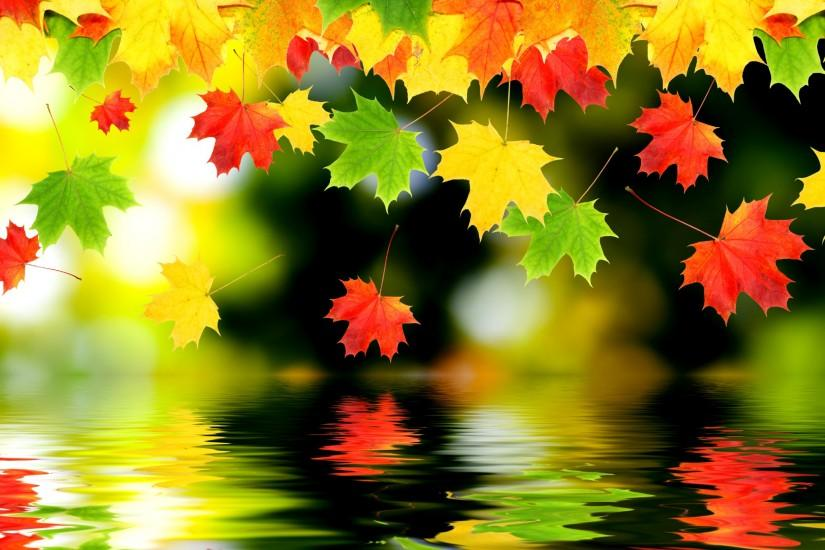 fall wallpaper 2560x1920 picture
