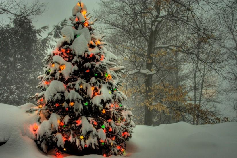 Download Snow Christmas Tree Wallpaper | Free Wallpapers